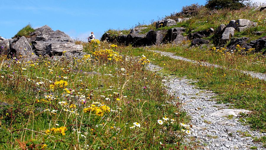 Hiking in the Burren